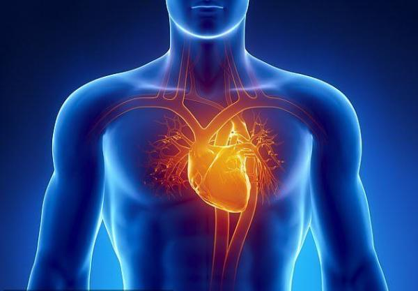 بیماری های قلبی,اخبار پزشکی,خبرهای پزشکی,تازه های پزشکی