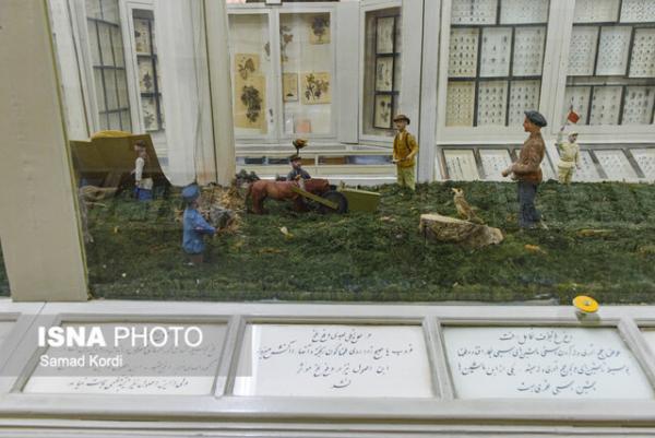 خاصترین موزه ایران,اخبار فرهنگی,خبرهای فرهنگی,میراث فرهنگی