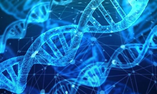 ساختار DNA,اخبار پزشکی,خبرهای پزشکی,بهداشت