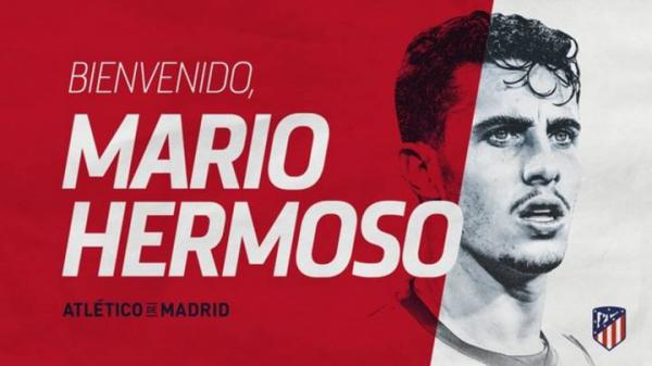 ماریو هرموسو,اخبار فوتبال,خبرهای فوتبال,نقل و انتقالات فوتبال