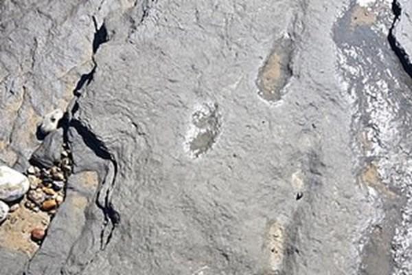 ردپای 950 هزار ساله انسان,اخبار جالب,خبرهای جالب,خواندنی ها و دیدنی ها