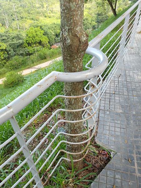 معماری با حفظ احترام به طبیعت,اخبار جالب,خبرهای جالب,خواندنی ها و دیدنی ها