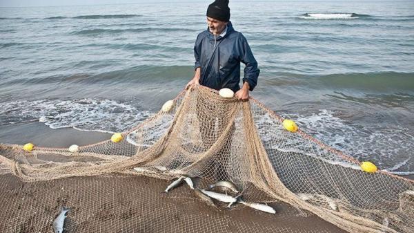 انواع صید ماهی در سواحل جنوب,اخبار اجتماعی,خبرهای اجتماعی,محیط زیست