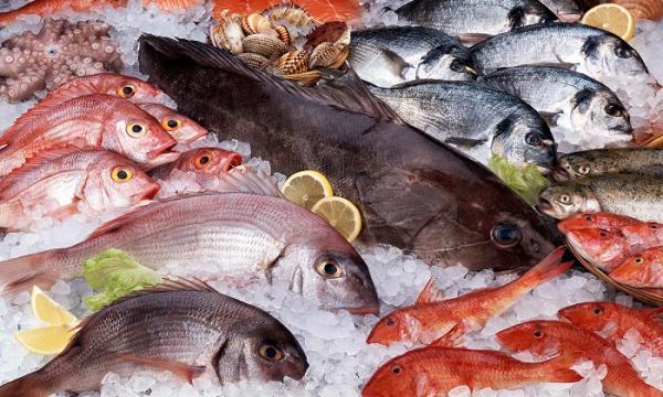 تاثیر ماهی های حاوی جیوه بر سلامتی,عملکرد مغز,بیماری فراموشی