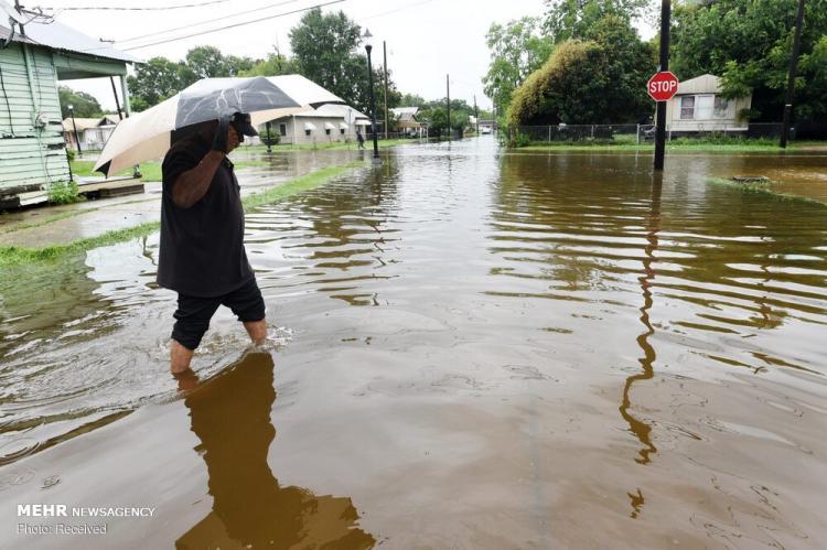 تصاویر طوفان بری در ایالت لوئیزیانا آمریکا,تصاویر طوفان بری در آمریکا,عکس های خسارت طوفان بری در ایالت لوئیزیانا