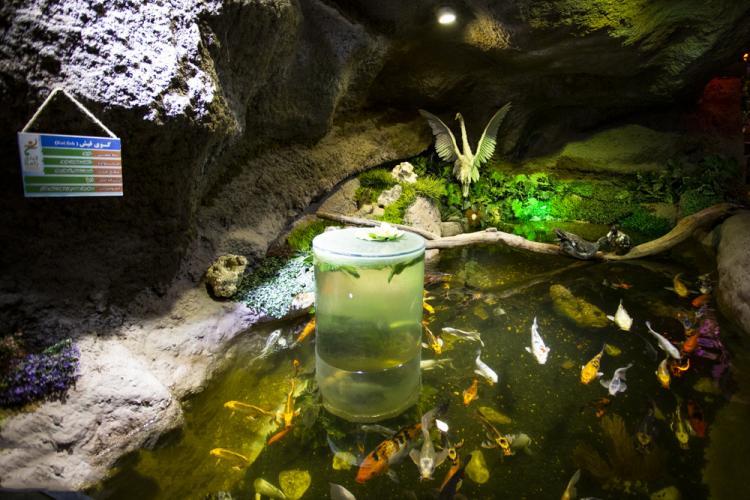 تصاویر غار آکواریوم,عکس های غار آکواریوم,تصاویر غار آکواریوم در دهکده گنجنامه