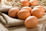 تخممرغ قهوهای تقلبی,اخبار اقتصادی,خبرهای اقتصادی,کشت و دام و صنعت