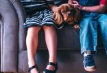 کودکان بیشترین افراد در معرض گازگرفتگی سگ ها,اخبار علمی,خبرهای علمی,پژوهش