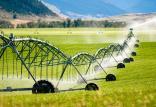 کشاورزی,اخبار اقتصادی,خبرهای اقتصادی,کشت و دام و صنعت