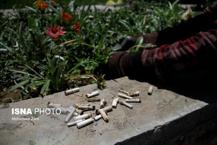 تصاویر مصرف دخانیات در ایران,عکس های مصرف سیگار در کشور,تصاویر مصرف قلیان