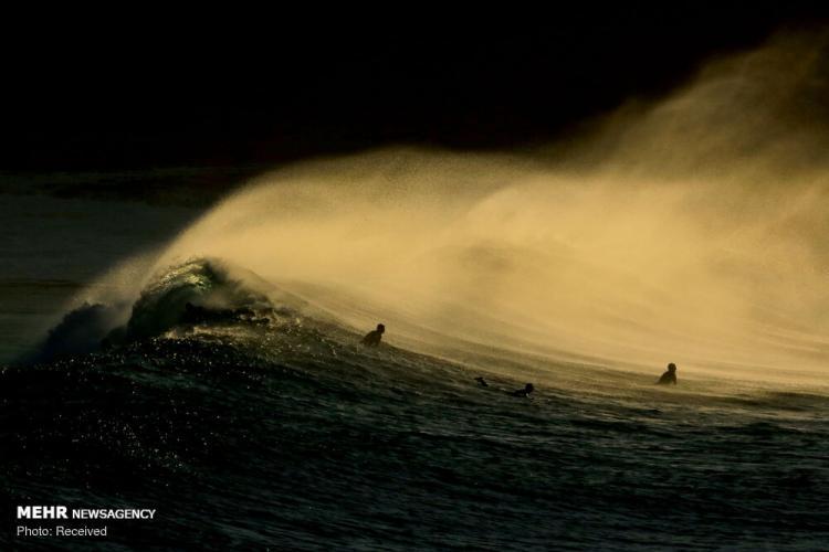 تصاویر موج سواری در سواحل سیدنی,عکس های موج سواری در سواحل سیدنی استرالیا,عکس های سواحل سیدنی