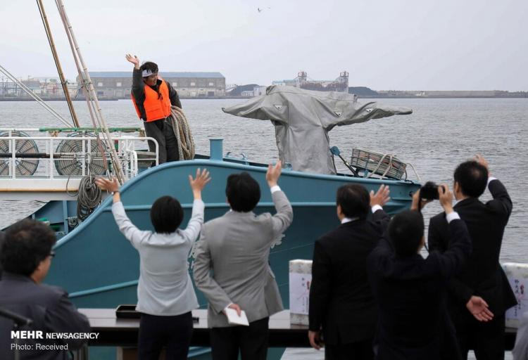 عکس شکار نهنگ در ژاپن,تصاویری از شکار نهنگ در ژاپن,عکس های شکار کردن نهنگ توسط مردم ژاپن