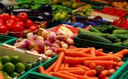 ممنوعیت صادرات محصولات کشاورزی,اخبار اقتصادی,خبرهای اقتصادی,کشت و دام و صنعت