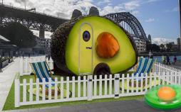 هتل آووکادو در استرالیا,اخبار جالب,خبرهای جالب,خواندنی ها و دیدنی ها