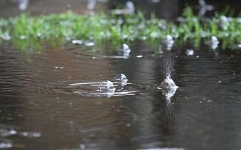 بارش های پاییزی,اخبار علمی,خبرهای علمی,طبیعت و محیط زیست
