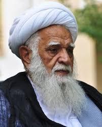 آیتالله محمد آصف محسنی,اخبار افغانستان,خبرهای افغانستان,تازه ترین اخبار افغانستان