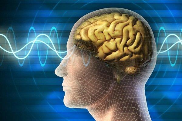 بیماری پارکینسون,اخبار پزشکی,خبرهای پزشکی,تازه های پزشکی