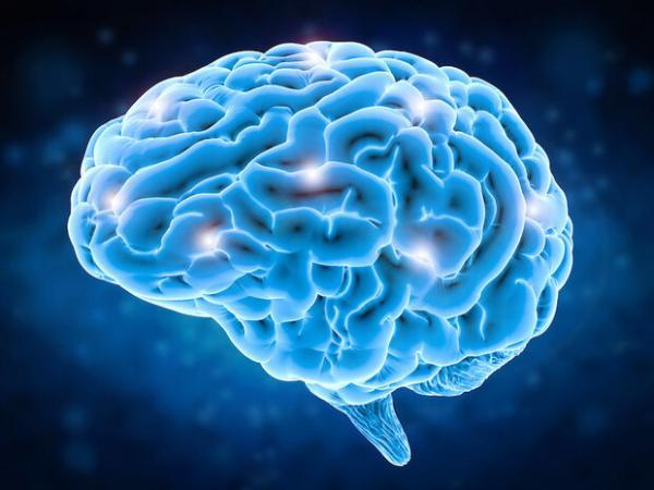 ایمپلنت مغزی,اخبار پزشکی,خبرهای پزشکی,تازه های پزشکی