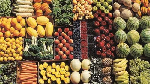 شرایط جدید صادرات میوه,اخبار اقتصادی,خبرهای اقتصادی,کشت و دام و صنعت