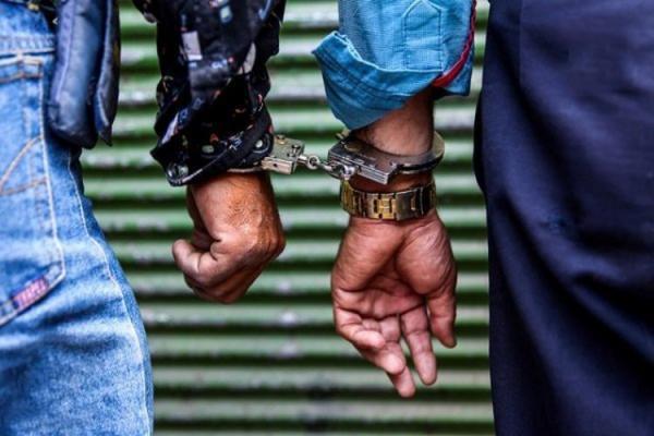 دستگیری باند سرقت دوقلوها,اخبار حوادث,خبرهای حوادث,جرم و جنایت