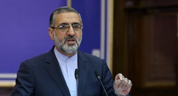 سید محمد هادی رضوی به ۲۰ سال حبس محکوم شد