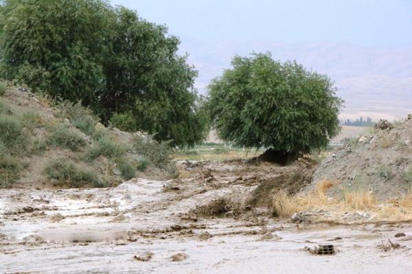 رودخانه دیرعلی,اخبار حوادث,خبرهای حوادث,حوادث طبیعی