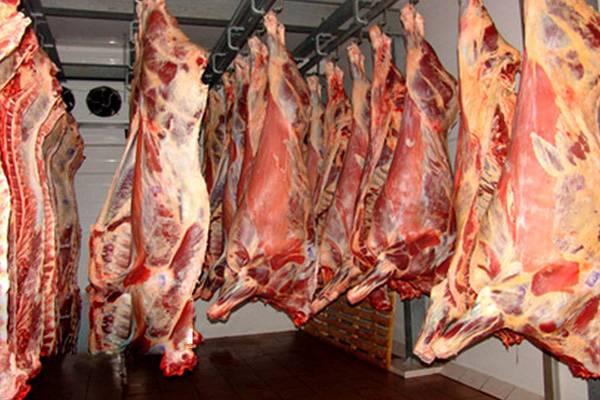 بازار گوشت قرمز,اخبار اقتصادی,خبرهای اقتصادی,کشت و دام و صنعت