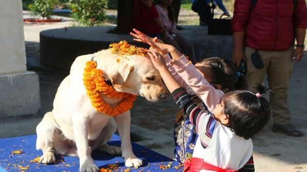 پرستش حیوانات در دوران کهن,اخبار جالب,خبرهای جالب,خواندنی ها و دیدنی ها