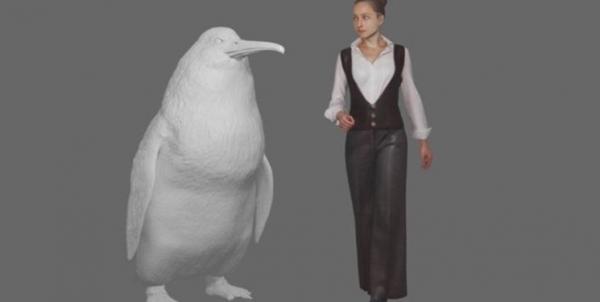 فسیل پنگوئنی به اندازه یک انسان,اخبار جالب,خبرهای جالب,خواندنی ها و دیدنی ها
