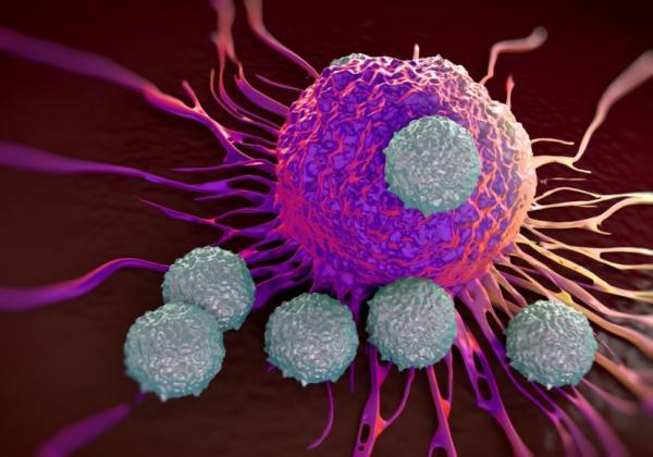 مرگ سلولهای سرطانی,اخبار پزشکی,خبرهای پزشکی,تازه های پزشکی