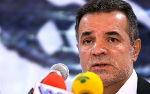 محمد حسن انصاری فرد,اخبار ورزشی,خبرهای ورزشی, مدیریت ورزش