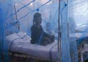 تب دنگی در بنگلادش,اخبار پزشکی,خبرهای پزشکی,بهداشت