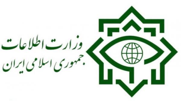 وزارت اطلاعات,اخبار سیاسی,خبرهای سیاسی,دفاع و امنیت