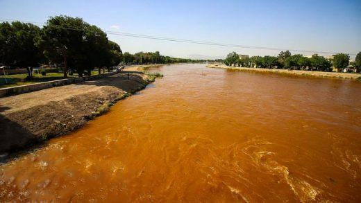 آلودگی آب زاینده رود,اخبار اجتماعی,خبرهای اجتماعی,محیط زیست