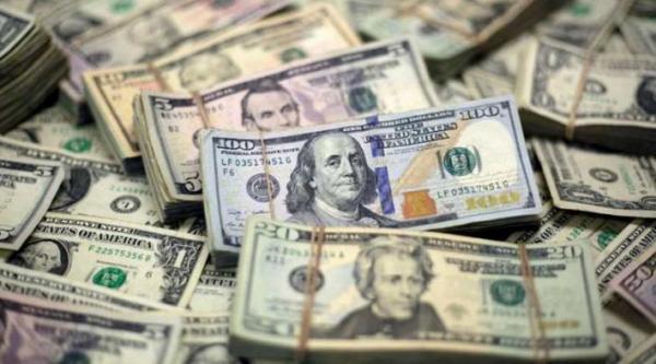 دریافت ارز دولتی توسط شرکت ها,اخبار اقتصادی,خبرهای اقتصادی,اقتصاد کلان