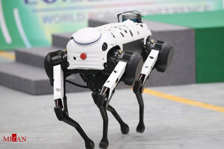 تصاویر کنفرانس جهانی ربات ۲۰۱۹,عکس های کنفرانس جهانی ربات ۲۰۱۹,تصاویر کنفرانس جهانی ربات ۲۰۱۹ در شهر پکن