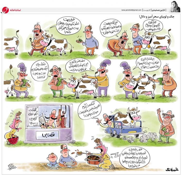 کارتون افزایش قیمت گوشت,کاریکاتور,عکس کاریکاتور,کاریکاتور اجتماعی