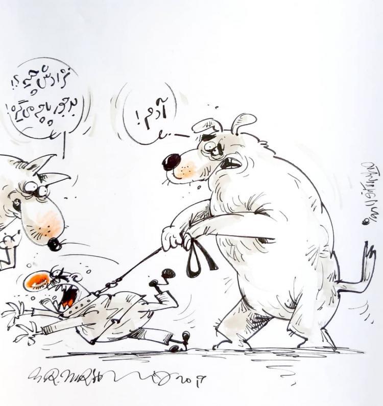 کارتون کشتن سگ های ولگرد ری,کاریکاتور,عکس کاریکاتور,کاریکاتور اجتماعی