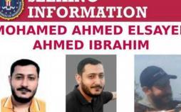 محمد احمد السید احمد ابراهیم,اخبار حوادث,خبرهای حوادث,جرم و جنایت