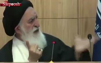 فیلم/ آیت الله علوی بروجردی: مرجعیت در شیعه، مرجعیت آزاد است