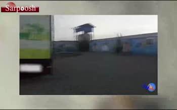 فیلم/ جزئیات جدید از ماجرای کشتار سگها در تهران؛ تجمع مردم معترض مقابل شهرداری