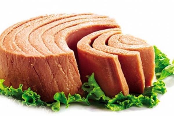 قیمت تن ماهی,اخبار اقتصادی,خبرهای اقتصادی,صنعت و معدن