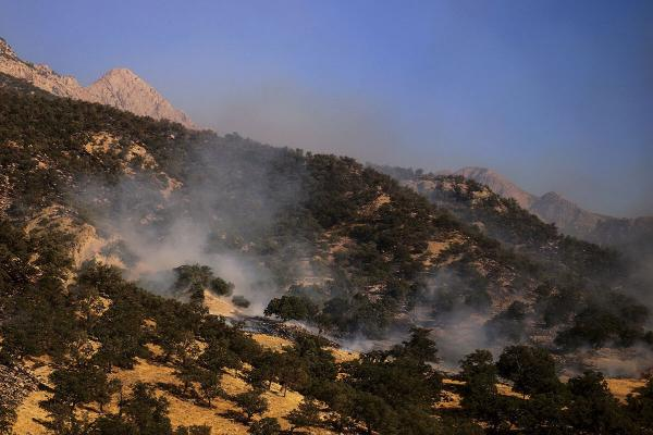 مهار آتش سوزی در نخودکار باغملک,اخبار اجتماعی,خبرهای اجتماعی,محیط زیست