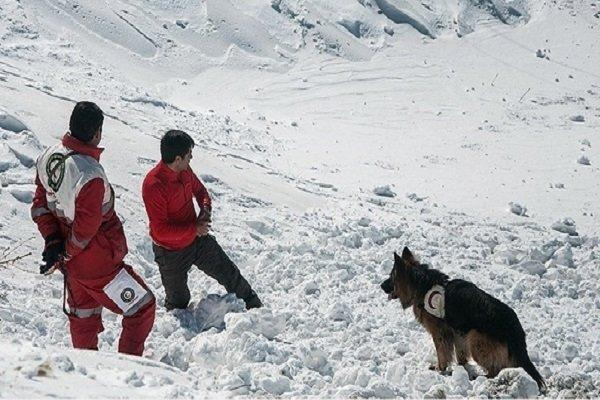 نجات کوهنوردان گمشده در سبلان,اخبار حوادث,خبرهای حوادث,حوادث امروز