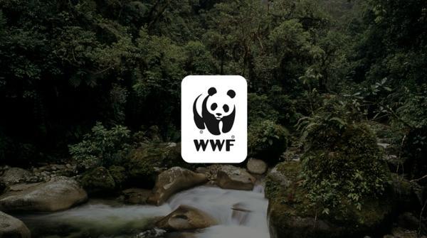 صندوق جهانی حیات وحش,اخبار اجتماعی,خبرهای اجتماعی,محیط زیست