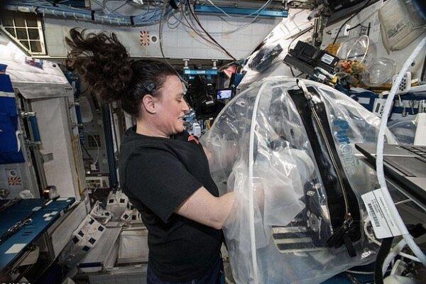 تولید سیمان در فضا,اخبار علمی,خبرهای علمی,نجوم و فضا