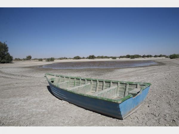 دریاچه هامون,اخبار اجتماعی,خبرهای اجتماعی,شهر و روستا
