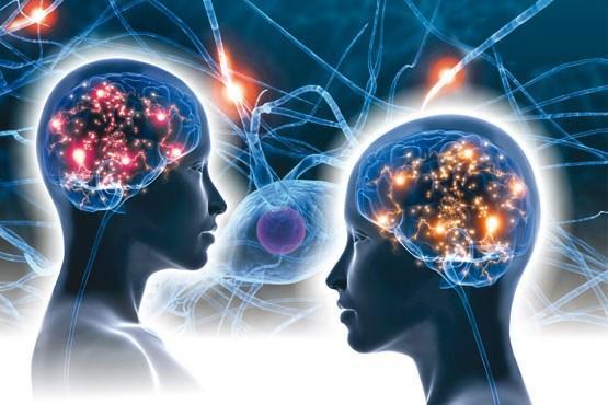 تاثیر بی خوابی در عملکرد مغز,اخبار پزشکی,خبرهای پزشکی,بهداشت