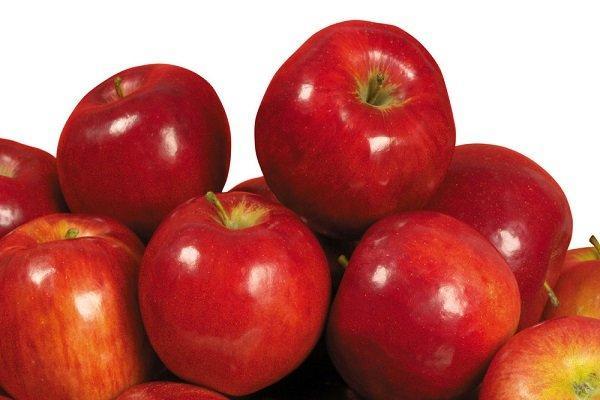 سیب,اخبار پزشکی,خبرهای پزشکی,تازه های پزشکی