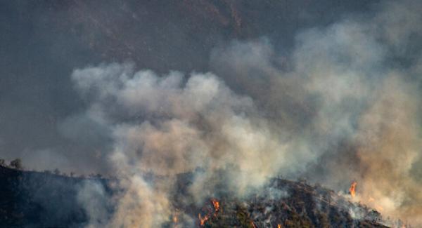 آتش سوزی در ارسباران,اخبار اجتماعی,خبرهای اجتماعی,محیط زیست